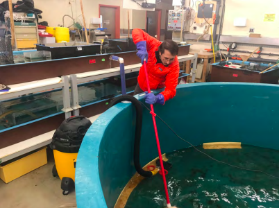 Figure 6: Dan cleans the sea water tank in the Crary Lab as the Icefin team prepares to deploy to Thwaites. Lots of gear return and space cleaning happened this week!